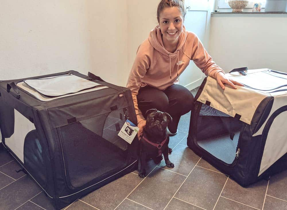 Faltbare Hundetransportbox Test