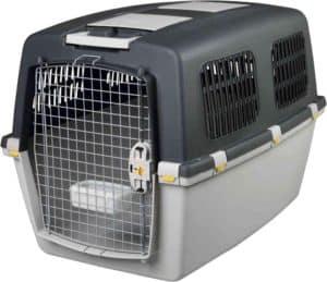 Hundetransportbox Flugzeug