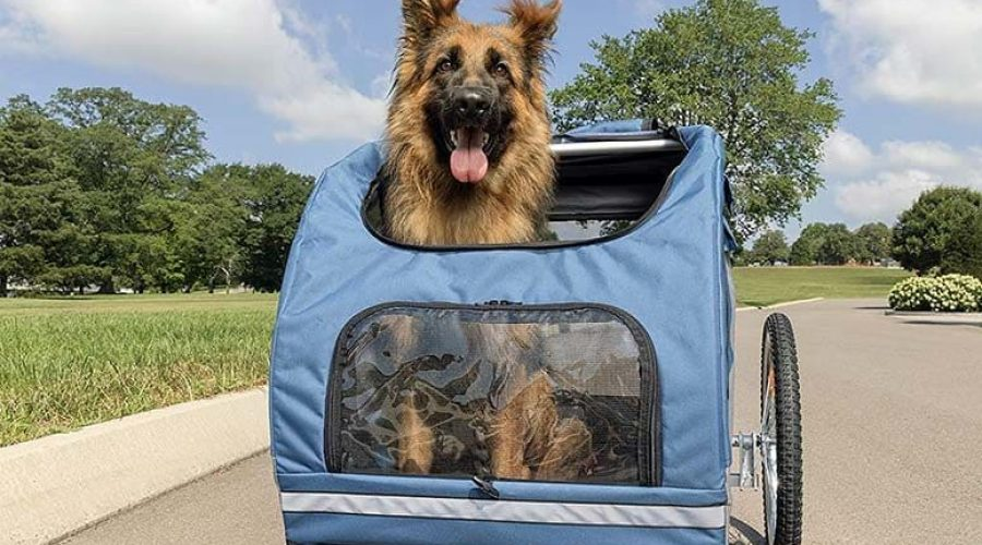 Fahrradanhänger Hund gefedert 2021